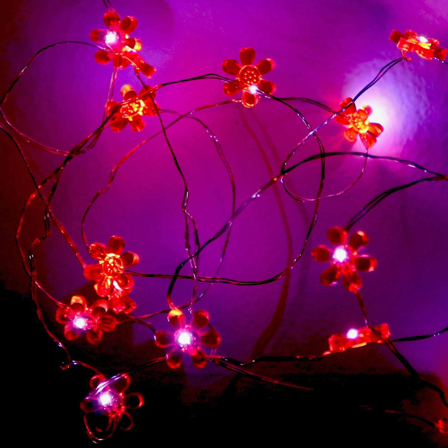 String Lights Cover Photo : Skusky iCover Battery Operated 10 Foot LED String Lights
